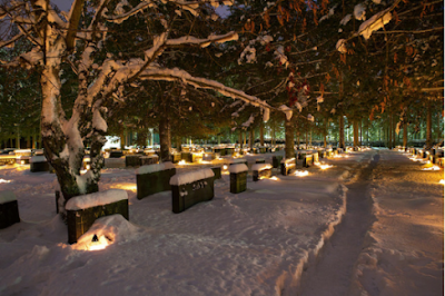 A snowy cemetery with large trees and lights illuminating graves all around
