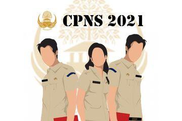 Pendaftaran CPNS 2021 dan PPPK Diperpanjang