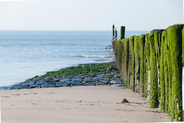 Cadzand-Bad, Breskens, Niederlande, Nordsee, Reisen, Beach, Holland, Meer,