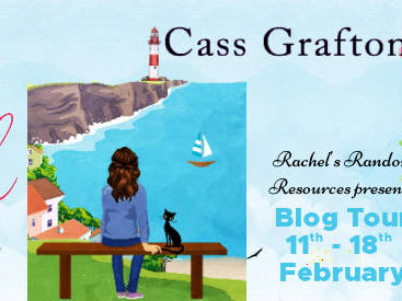 The Cottage in a Cornish Cove by Cass Grafton Review