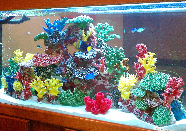 Contoh Desain Akuarium - LovedFish