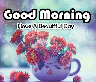 New Good Morning 4k Full HD Images Download For Daily%2B79