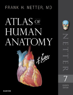 Atlas of Human Anatomy: Including Student Consult - Netter - 7th edition - Netter Basic Science