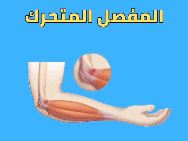 درس التقلص العضلي و حركية العظام للسنة الثالثة اعدادي