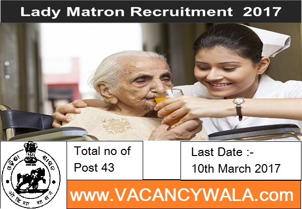 e district odisha how many district in odisha odisha all district odisha e district total district in odisha 12th job, Graduation Degree, Collectorate Malkangiri Recruitment 2017 43 Lady Matron, Junior Matron www.vacancywala.com