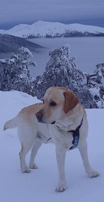Tao y nubes y nieve y al fondo el Montón de Trigo