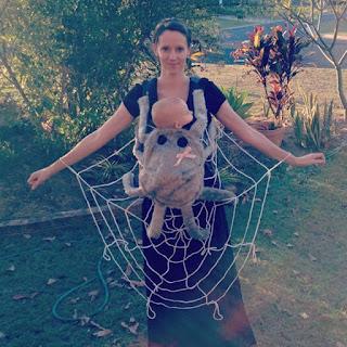 Spiderweb Halloween