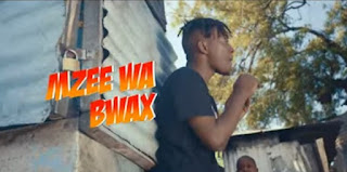 DOWNLOAD VIDEO | MZEE WA BWAX - SANAM LA MICHELE MP4