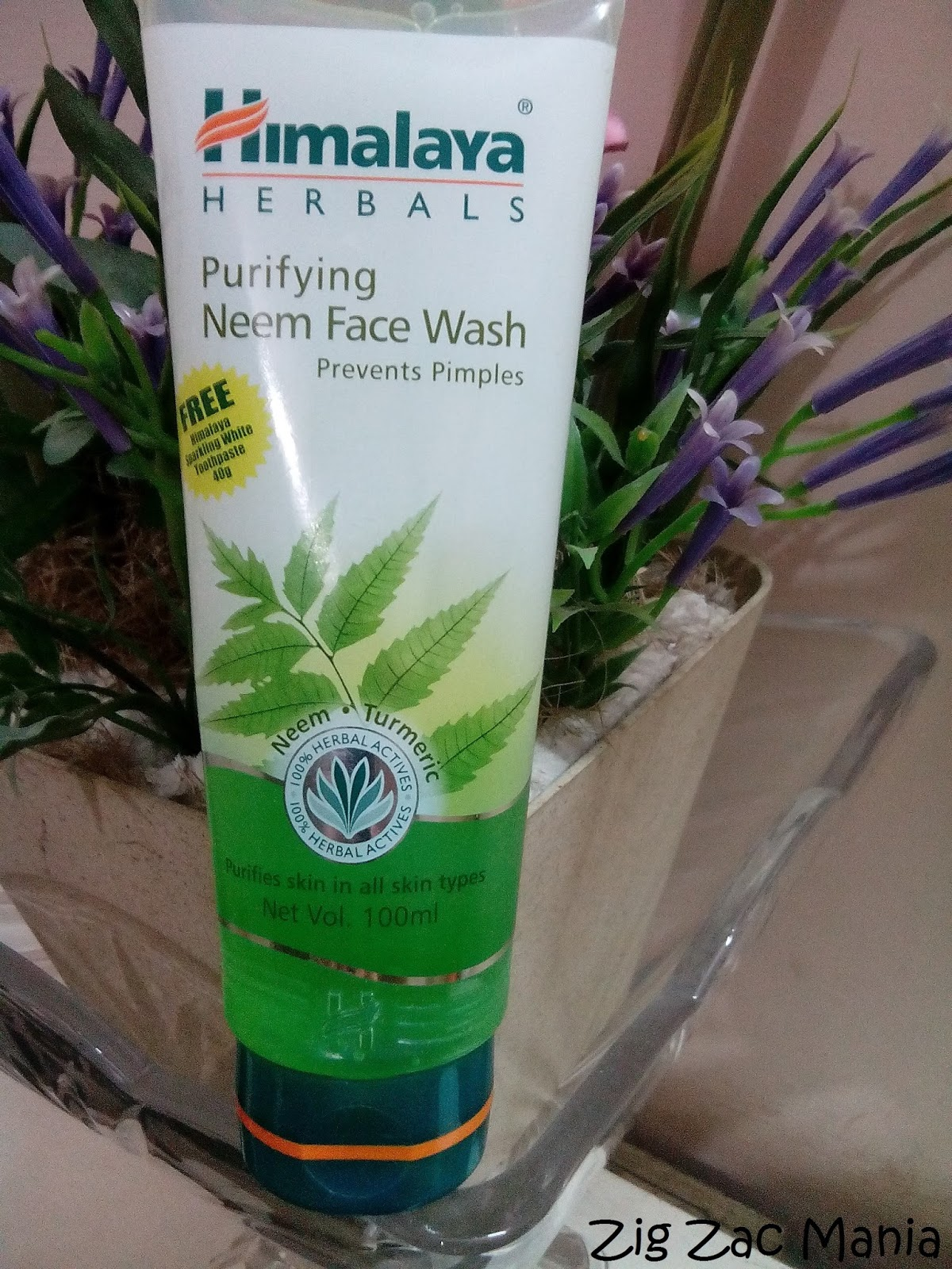 Himalaya Herbals Purifying Neem Face Wash Review - Zig Zac Mania