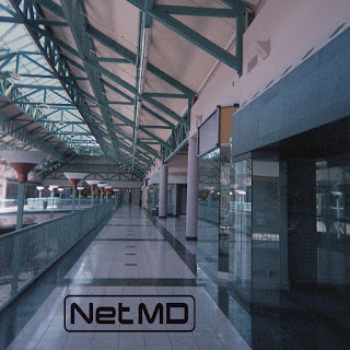 White Shirt Brigade: NETMD- Dead Mall, 2005 Review