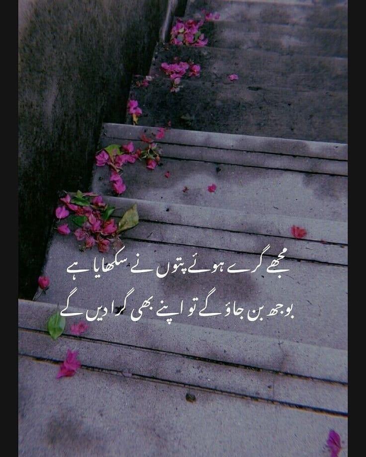 Hindi and Urdu for WhatsApp DP and Status