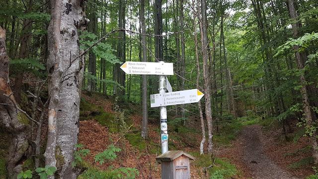 Wegweiser Rundweg Alpsee