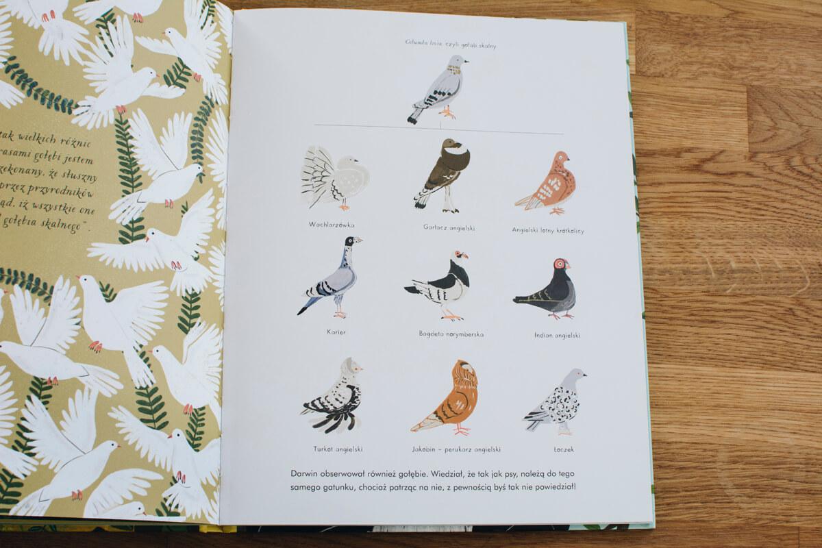 Wnętrze książki o powstawaniu gatunków ewolucja według karola darwina