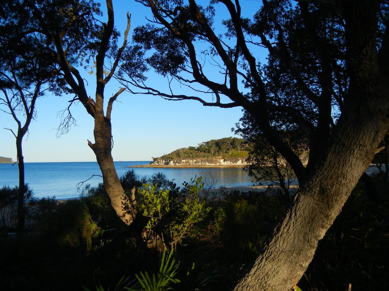 Patonga to pearl beach walk