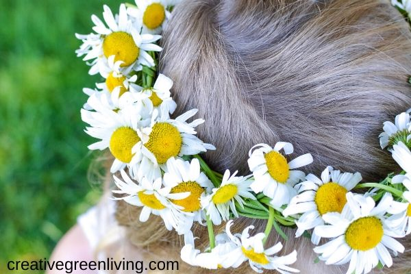 Little girl with a braided daisy chain flower crown on her head