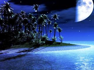 Midnight Island Boy Escape