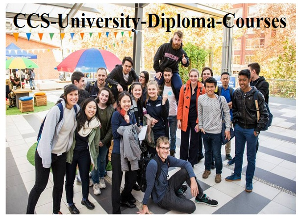 CCS University Diploma Courses -⚡Take your professional life to new levels.