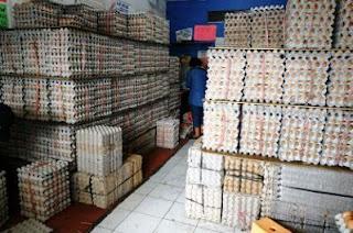 distributor telur Jakarta Timur