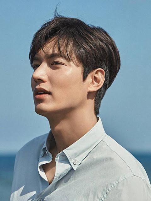 Biodata, Profil, dan Fakta Lee Min Ho