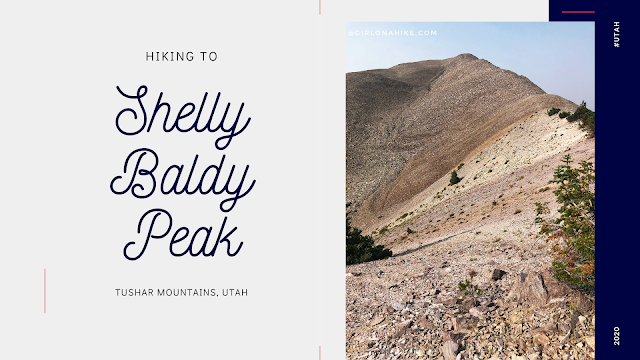 Hiking to Shelly Baldy Peak