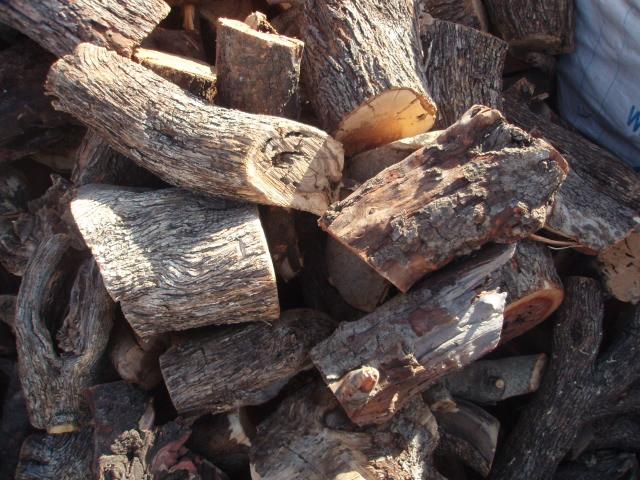 Άρπαξαν 15 τόνους ξυλείας και τρεις τόνους ελιές! - Μεγάλη καταστροφή και σε αμπελοπαραγωγο