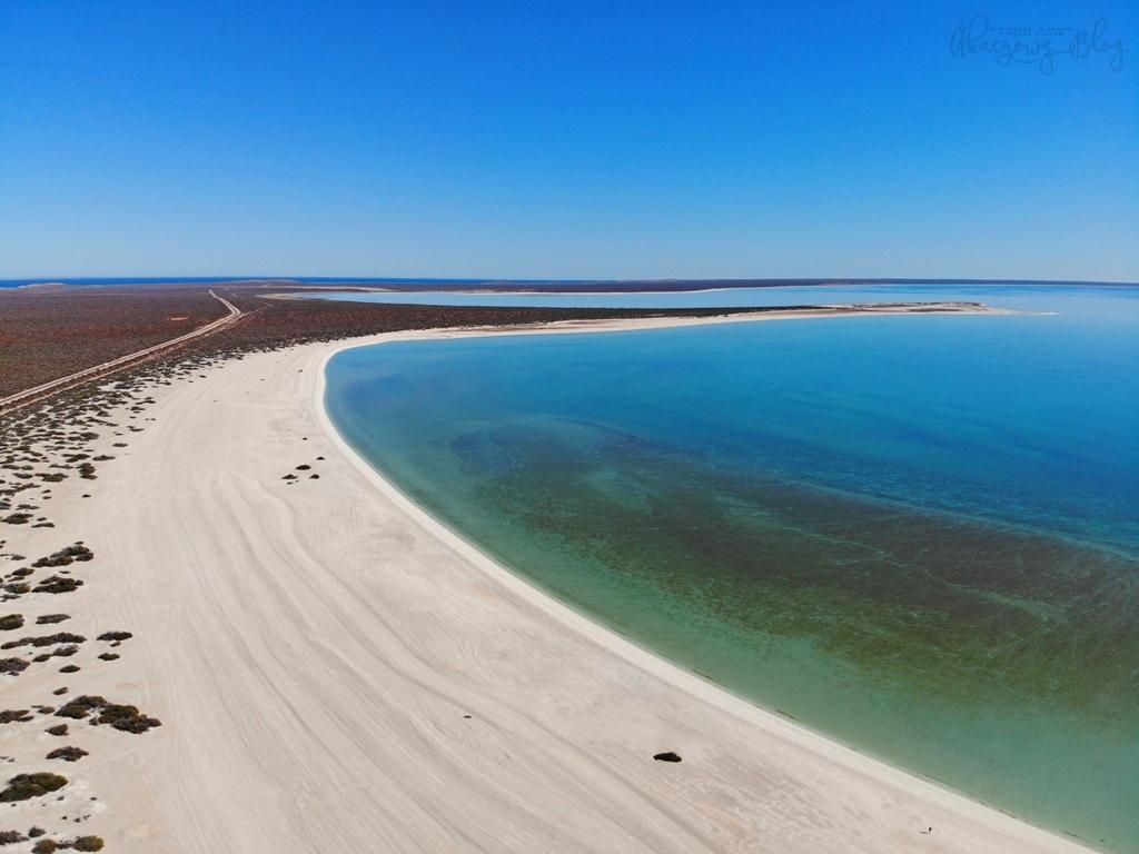 Shell Beach, czyli plaża muszelkowa w Australii Zachodniej