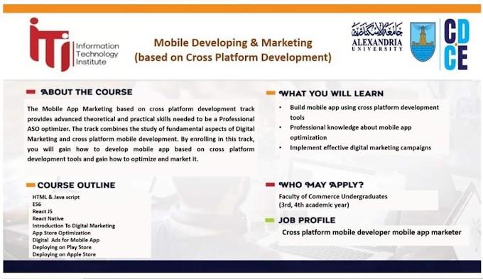 مبادرة تدريب شباب الجامعات من معهد تكنولوجيا المعلومات