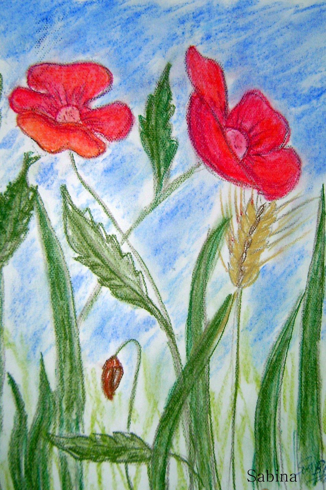 Dibujo Pintura Y Escritos Flores