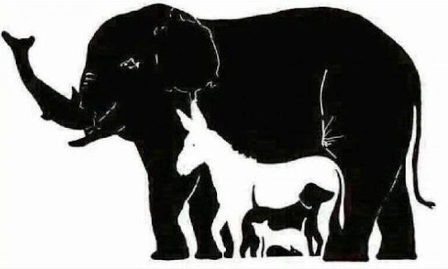 Εσείς πόσα ζώα βλέπετε στην εικόνα;