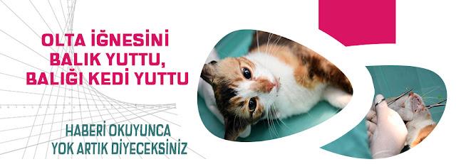 MERSİN, Mersin Büyük Şehir Belediyesi, Mersin Haber, MANŞET,