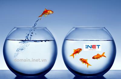 Chiến lược đầu tư và kinh doanh tên miền - iNET