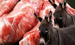 اسماء المطاعم التى تبيع لحم الحمير، اسماء المحلات التى تبيع لحوم حمير في مصر ؛ مطاعم ومحلات تبيع لحم حمير واحصنة