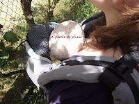 porte-bébé préformé Hoodiecarrier Jpmbb portage épaules bretelles bébé tétière