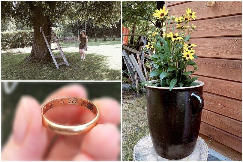 wakacje na wsi, żółte kwiaty, złota obrączka