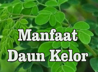 daun kelor  cara mengolah daun kelor  efek samping daun kelor  manfaat daun kelor untuk rahim  manfaat daun kelor untuk mata  daun kelor mistis  efek samping daun kelor untuk wajah  kandungan daun kelor  jual daun kelor