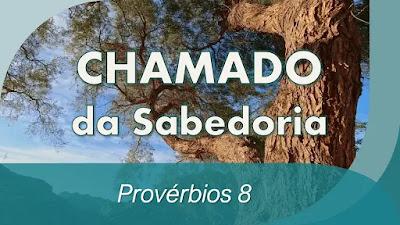 estudo bíblico provérbios 8