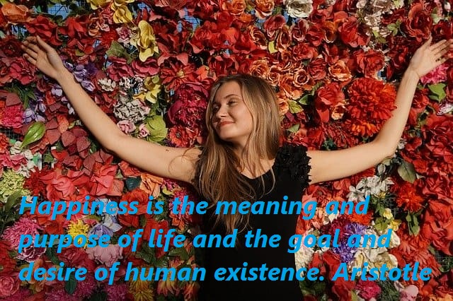 meaning of life, desire of human existence