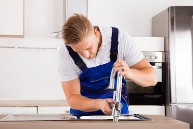 professonal plumber