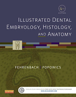 Illustrated Dental Embryology, Histology and Anatomy 4th Edition