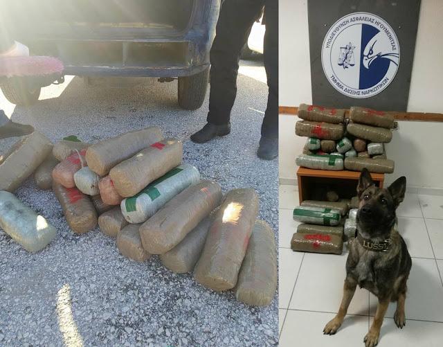 Ηγουμενίτσα: Κατασχέθηκαν 36 κιλά κάνναβης – Μία σύλληψη (ΦΩΤΟ+ΒΙΝΤΕΟ)