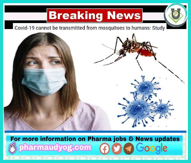 Study | Covid-19 cannot be transmitted from mosquitoes to humans | Pharma News