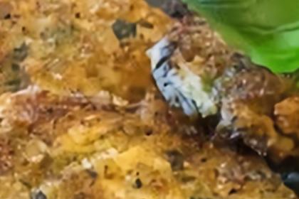 Crazy Chicken Cakes with Marinara Sauce