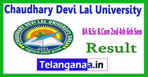 CDLU Chaudhary Devi Lal University  BA B.Sc B.Com 2d 4th 6th Sem Result
