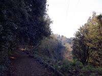 via francigena del sud da nemi a castel gandolfo