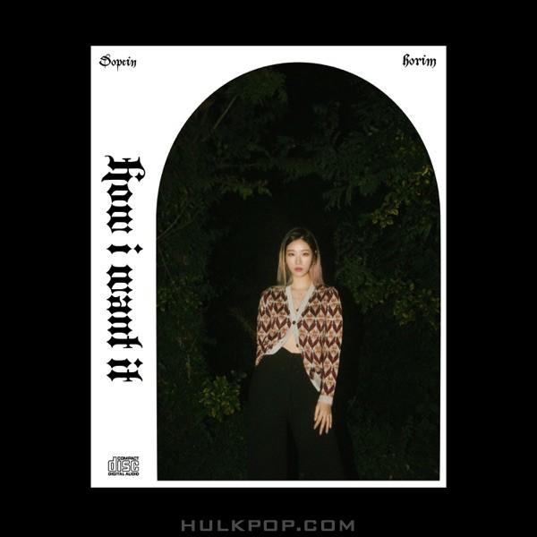 Dopein – How I want it (feat. Horim) – Single