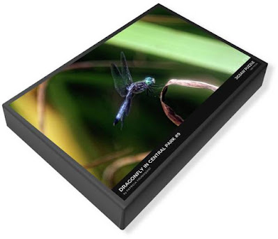 """This image of my puzzle's (""""Dragonfly #9"""") packaging is from Fine Art America @  https://fineartamerica.com/featured/dragonfly-in-central-park-9-patricia-youngquist.html?product=puzzle&puzzleType=puzzle-20-28"""