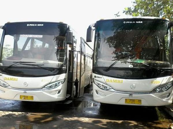 Layanan Bus Pariwisata Perum DAMRI Bandung