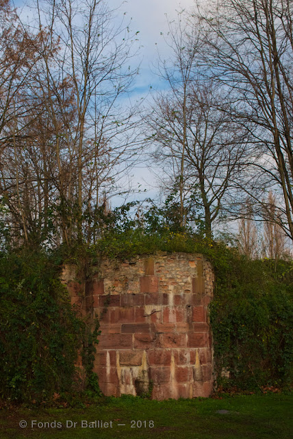 Fortifications de Strasbourg : vestiges de la 4e extension (cliché Dr Balliet)