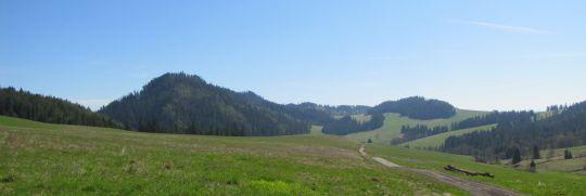 Jurgowskie Hale. Po lewej dominuje zalesiony stożek Gajnej Skały.