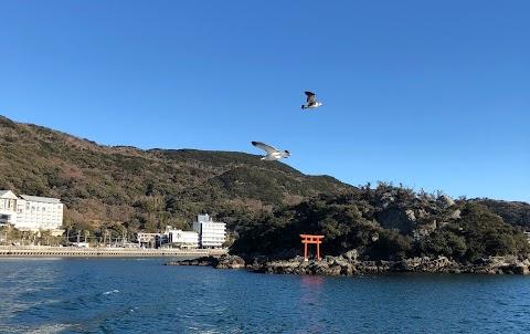 #8.Free as a Kite